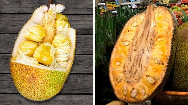 20 От Най-Необичайните Екзотични Плодове,За Които Никога Не Сте И Чували 12