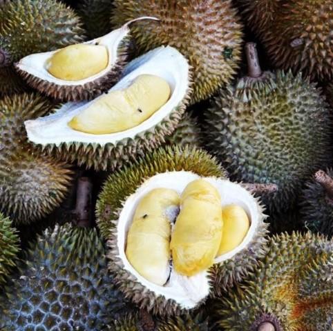 20 От Най-Необичайните Екзотични Плодове,За Които Никога Не Сте И Чували 11