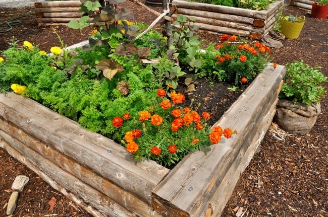 12 Готини Идеи За Оригинален Двор, За Който Всеки Градинар Мечтае 10