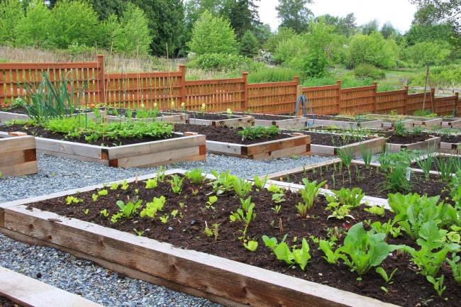 12 Готини Идеи За Оригинален Двор, За Който Всеки Градинар Мечтае 12