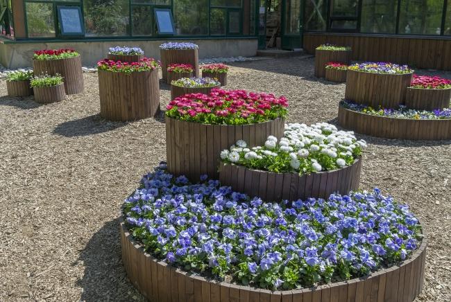 12 Готини Идеи За Оригинален Двор, За Който Всеки Градинар Мечтае 34