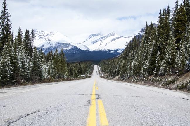12 Спиращи Дъха Пътища, Които Ще Ви Накарат Да Се Изненадате 9