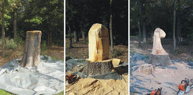 Художник Използва Верижен Трион, За Да Превърне Дърветата В Скулптури, А Резултатът Е Впечатляващ 55