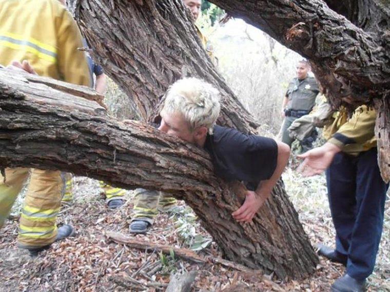 Страшни снимки на гладни дървета, които поглъщат всичко около себе си! Вижте силата на природата! 62