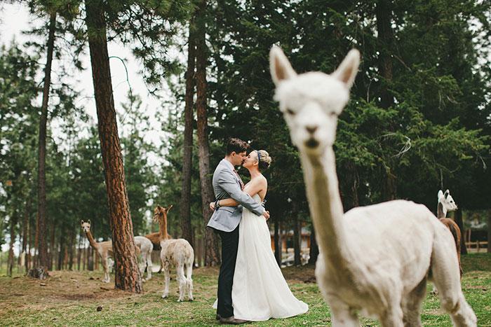 Тези сватбени снимки определено могат да провалят сватбата ви! Не ги допускайте! 8