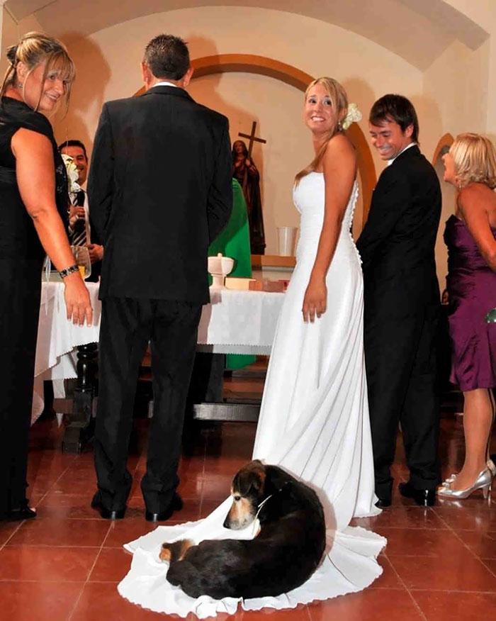 Тези сватбени снимки определено могат да провалят сватбата ви! Не ги допускайте! 13