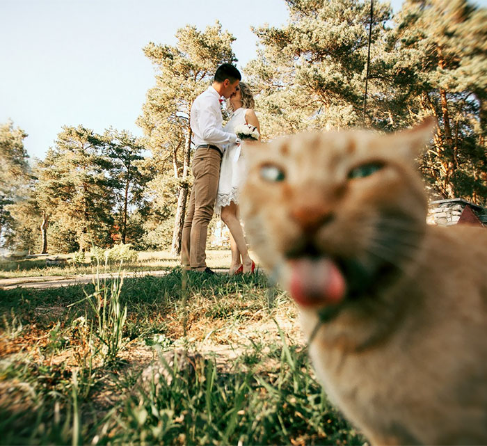 Тези сватбени снимки определено могат да провалят сватбата ви! Не ги допускайте! 12