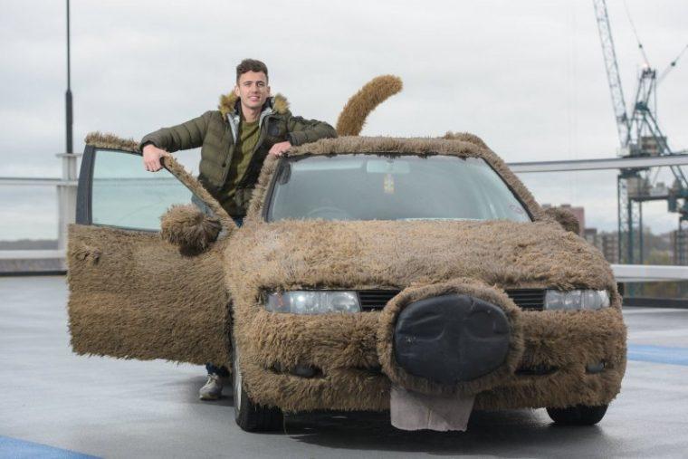 Внимание, това НЕ са животни, а автомобили на луди фенове, шокиращи кадри 56