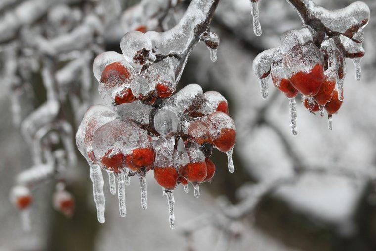 Тези природни аномалии, могат да се случат само когато е замръзващо студено! Шокиращи кадри! 13