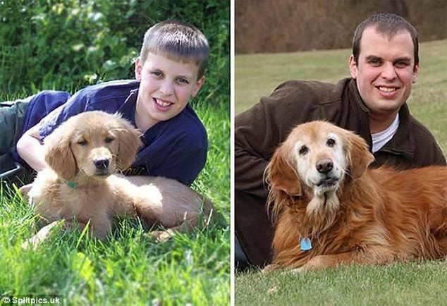 Тези кученца бяха малки и сладки, но какво стана като пораснаха.. Няма да повярваш как.. 34