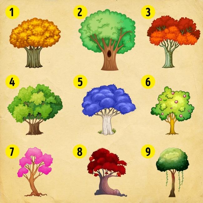 Избери си дърво, и разбери какви промени те очакват през Новата година! 8