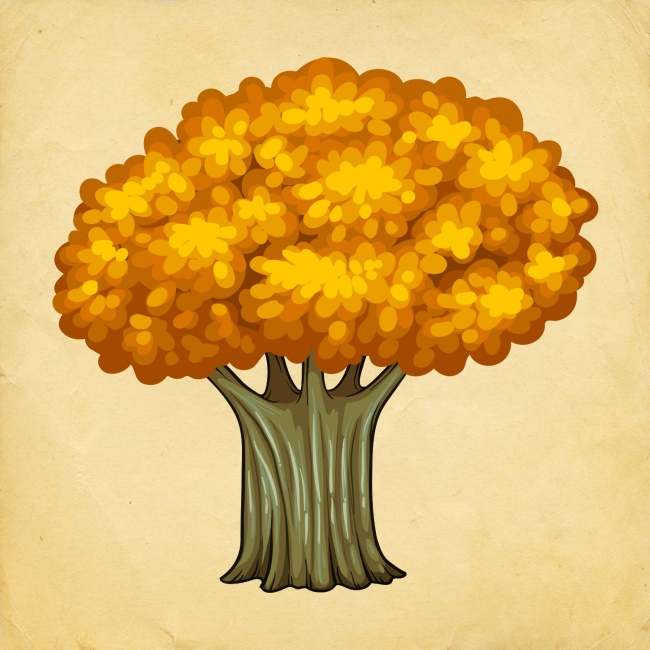 Избери си дърво, и разбери какви промени те очакват през Новата година! 7