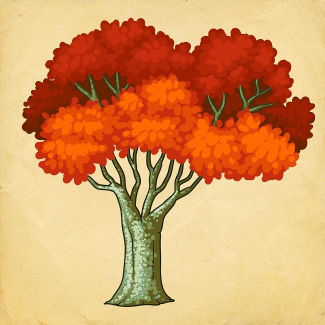 Избери си дърво, и разбери какви промени те очакват през Новата година! 9