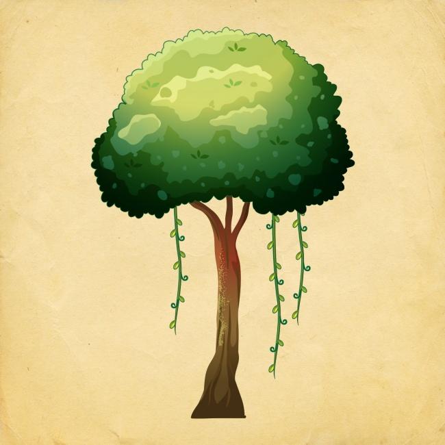 Избери си дърво, и разбери какви промени те очакват през Новата година! 10