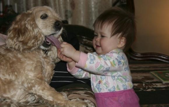За тези деца търпението на животните е просто един огромен мираж, горките животни 58