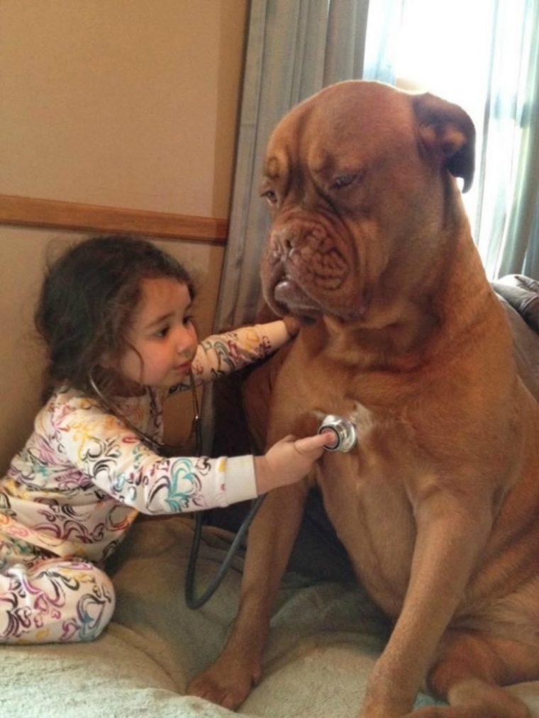 За тези деца търпението на животните е просто един огромен мираж, горките животни 57