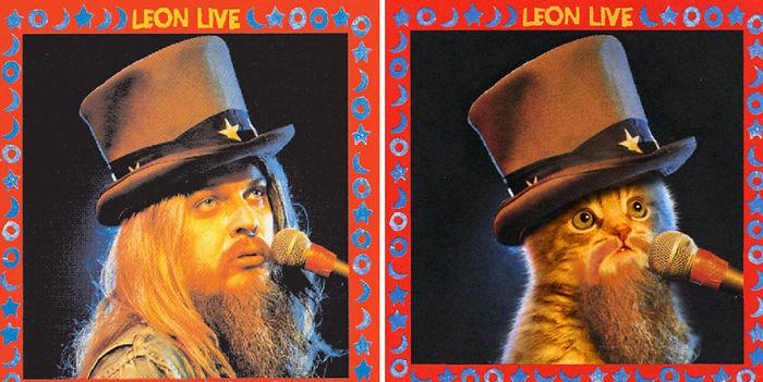 Дизайнери превърнаха тези котки във фотомодели.. Скандални прилики! 11