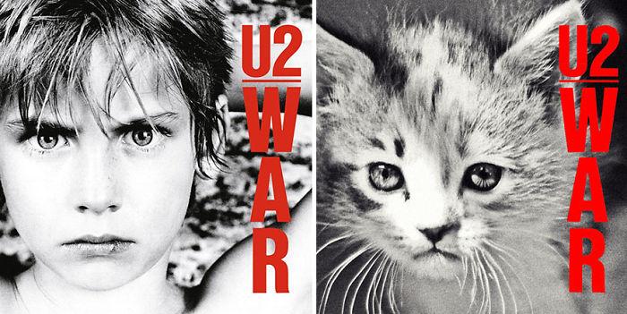 Дизайнери превърнаха тези котки във фотомодели.. Скандални прилики! 13