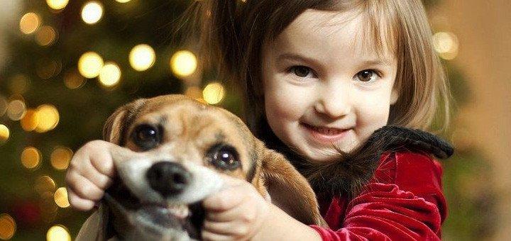 За тези деца търпението на животните е просто един огромен мираж, горките животни 8