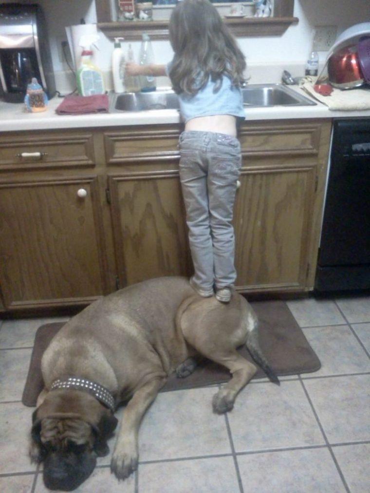 За тези деца търпението на животните е просто един огромен мираж, горките животни 14