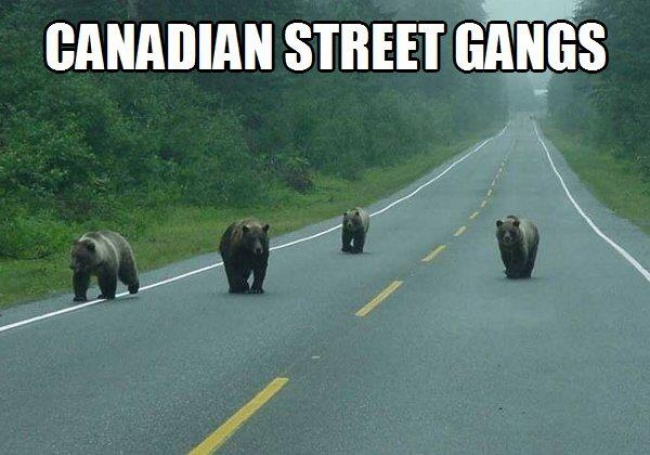 Тези 20 Снимки показват през какво нещо трябва да мине всеки един Канадец.. Съвсем различен живот от 57