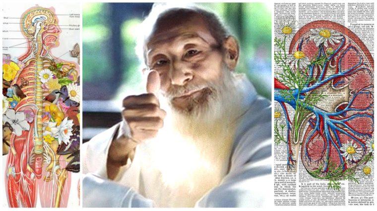 Японският лечител и дълголетник Кацудзо Ниши разкрива как да прочистим бъбреците и кръвта! 14