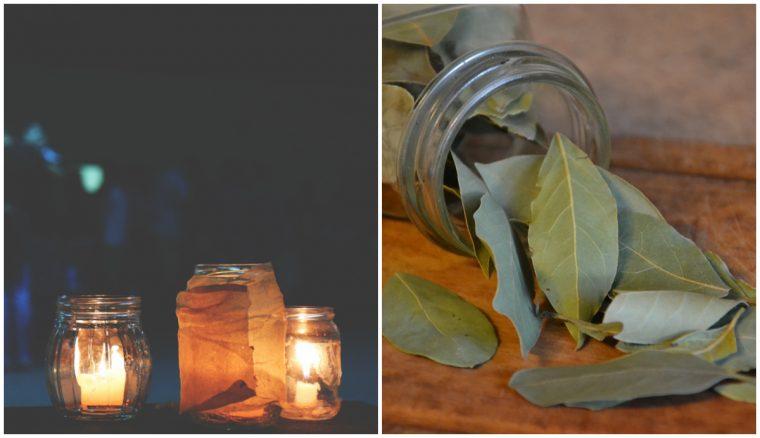 Запалете няколко листа дафинов лист в дома си! Резултатът е изненадващ... 8
