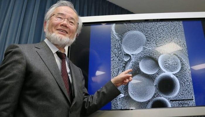 Японски биолог измисли диета, за която получи Нобелова награда и ни показа как да се прочистим! 33