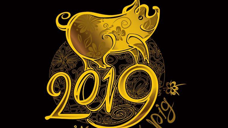 Годината на Зeмнaтa Cвиня ни очаква през 2019 година 33