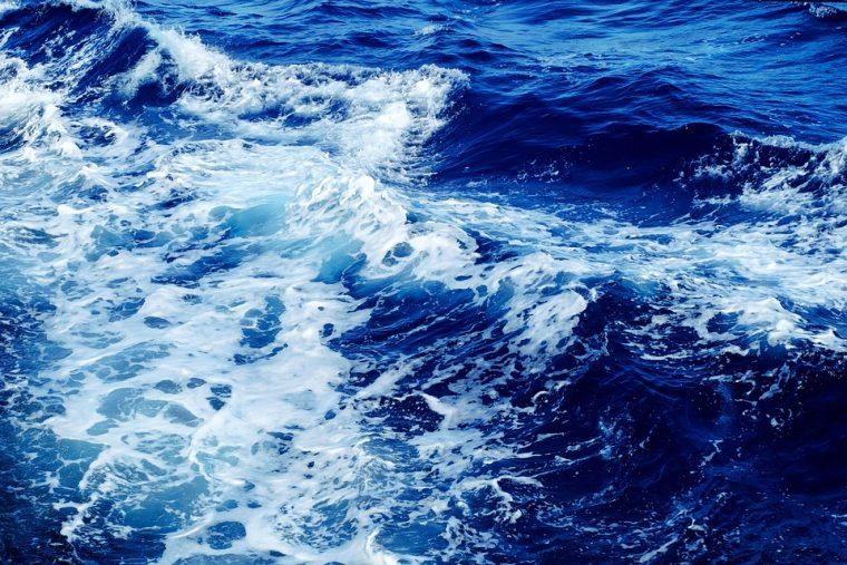 Историята за двамата корабокрушенци, която трогна социалните мрежи 8