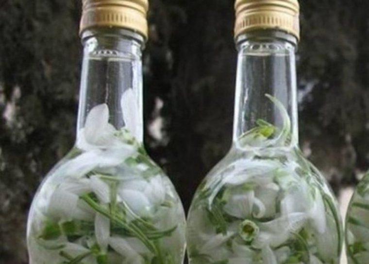 Бабиния лек с кокичета, накиснати в ракия, които е познат на поколение българи 8
