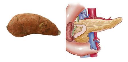Храните, които приличат на частите на тялото, те са най-полезни съоветно за тях 20