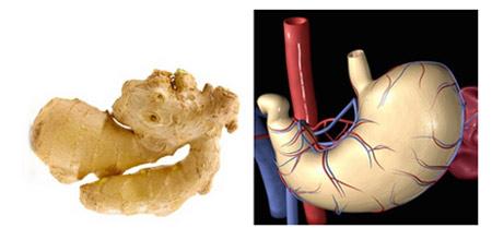 Храните, които приличат на частите на тялото, те са най-полезни съоветно за тях 18