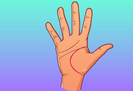 Бързо гледане на ръка - Какво казва линията на живота 57