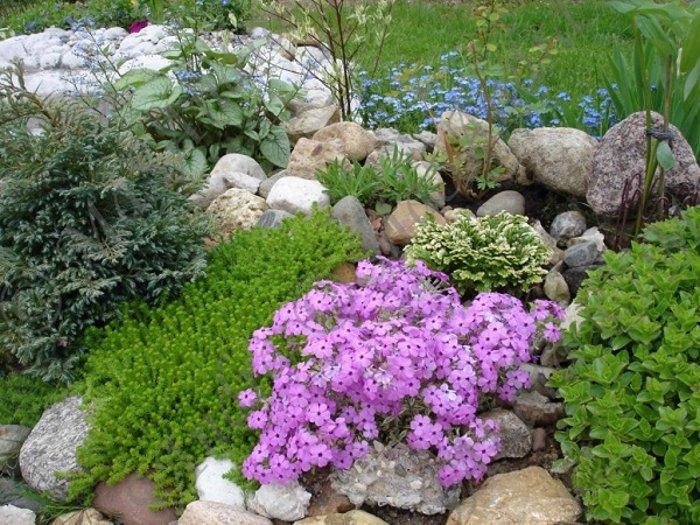 Най-новата мода в двора, е каменната градина - Красота без много усилия (СНИМКИ) 74