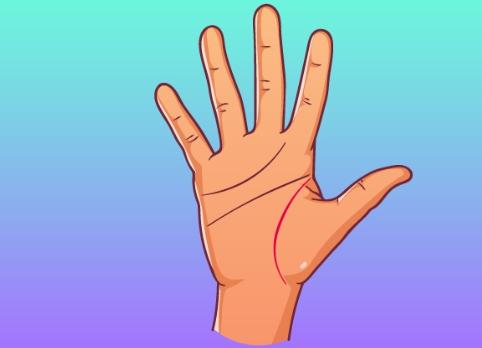 Бързо гледане на ръка - Какво казва линията на живота 56