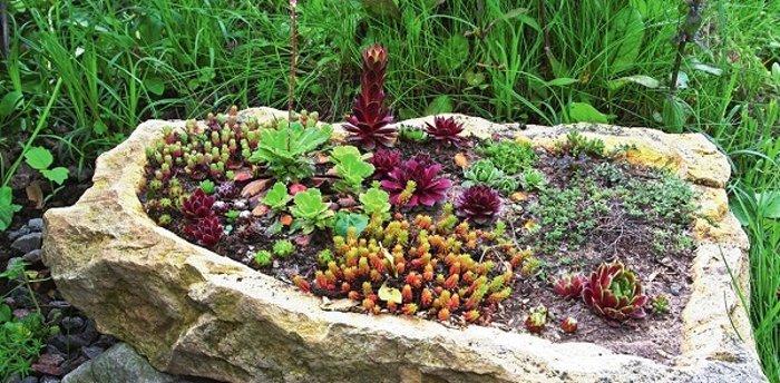 Най-новата мода в двора, е каменната градина - Красота без много усилия (СНИМКИ) 70