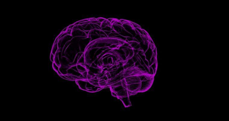 Нужна е само една промяна в навиците ни, за предотвратим умствения упадък в късна възраст 54