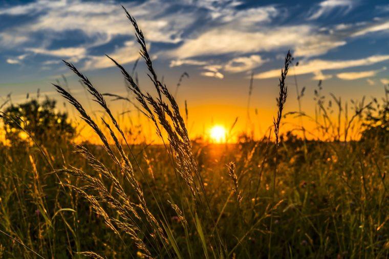 Нещата, които трябва да направиш за да внесеш положителна промяна в живота ти 56