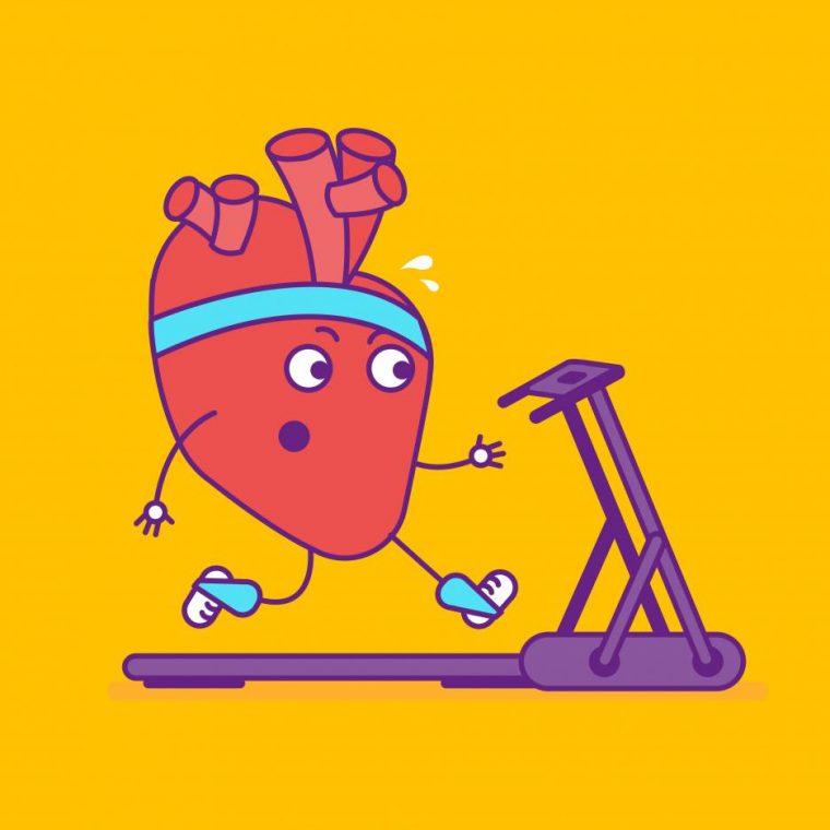 Теста се прави за под минутка, а резултатите показват колко здраво е сърцето ви 54