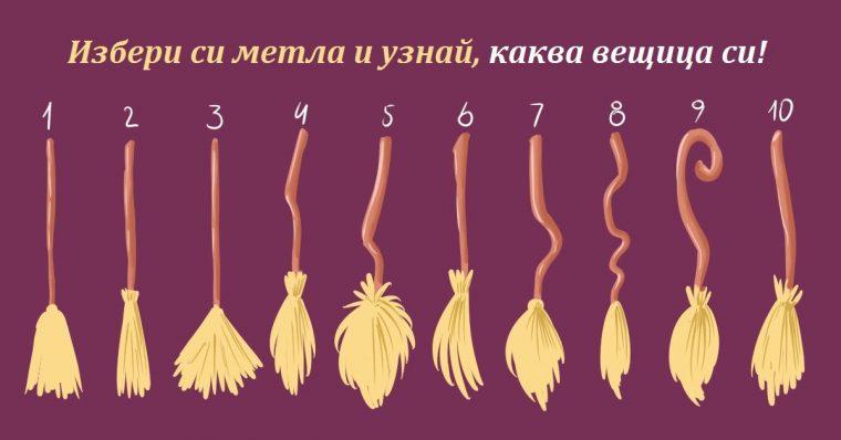 Избери си метла и разбери коя вещица си - Само за жени с чувство за хумор 56