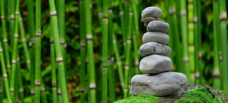 Изборът е в нашите ръце: да чуем шепота или да чакаме камъка... 54