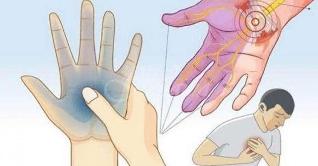 Липсата на калий разрушава цялото тяло. Ето защо е изключително важно да поддържаме нормалните му нива 58