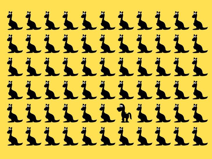 15 загадки, които само 10% от хората могат да решат от край до край 65